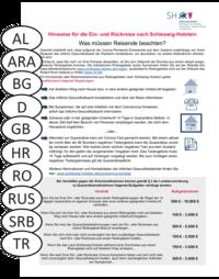 Grafik des Informationsblatts für Reiserückkehrer mit Nationalitätszeichen